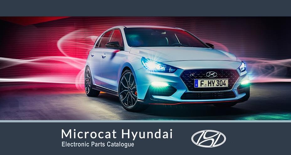مایکروکت هیوندای Microcat Hyundai
